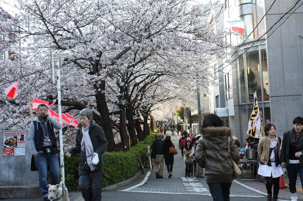 Shopping in Tokyo Nakameguro