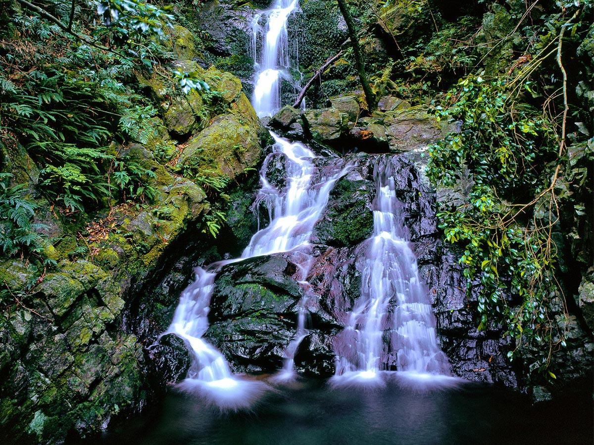 Yakushima Island Waterfall