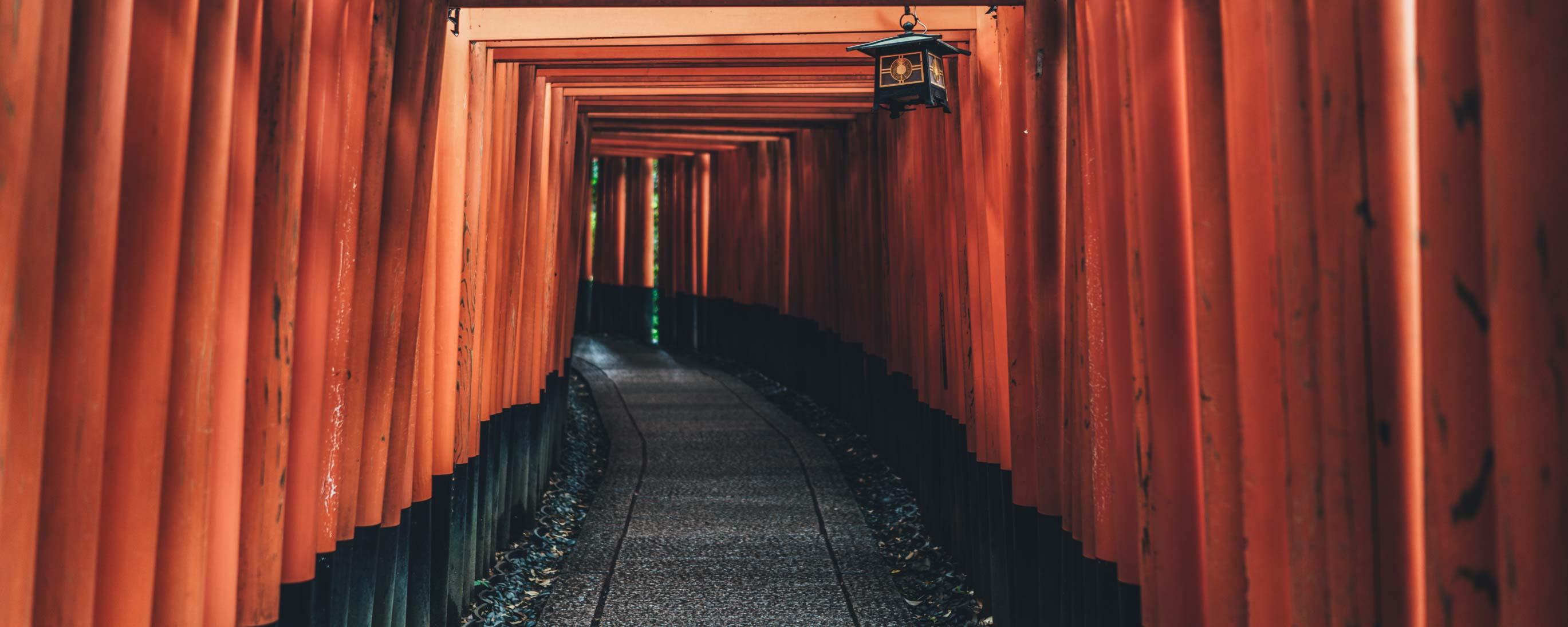 Fushimi Inari Taisha Torii Kyoto Japan 2