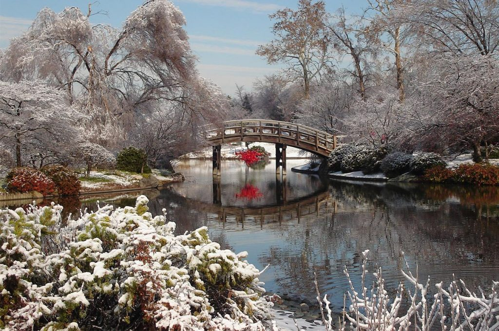 Japanese Garden Winter