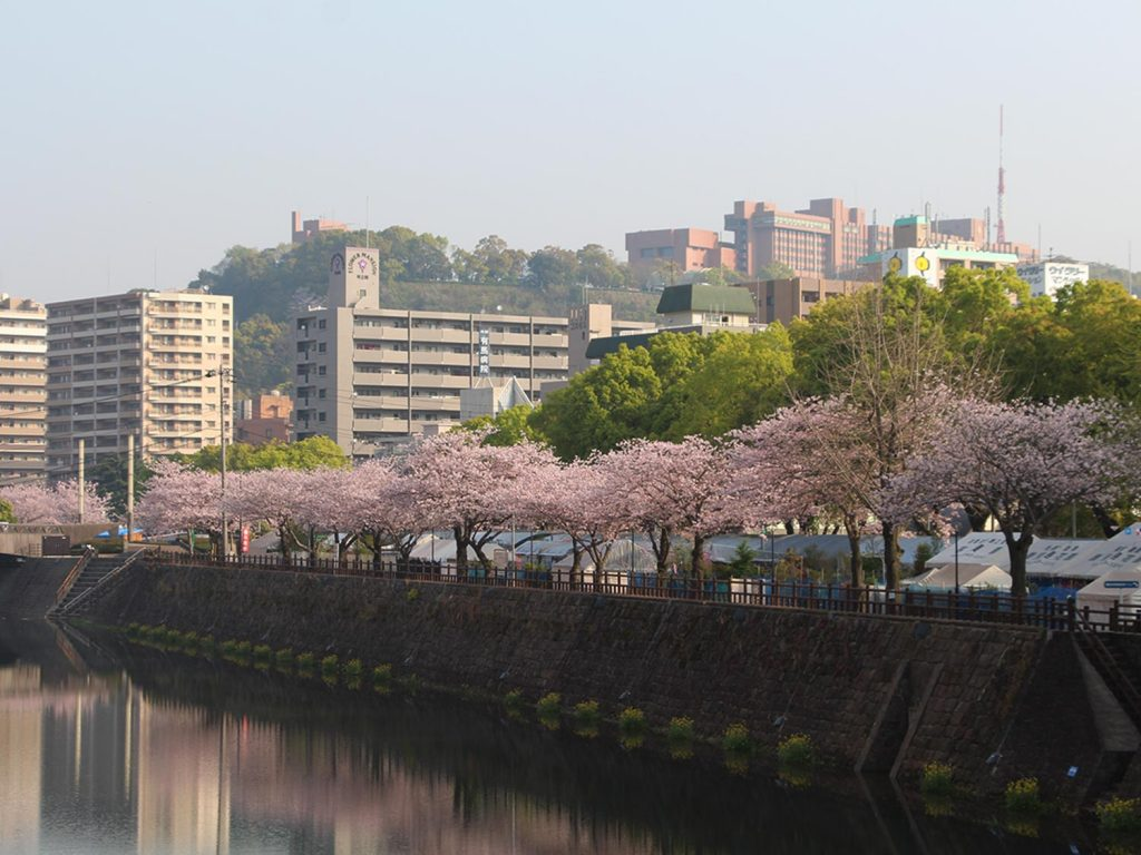 Kagoshima Japan Senganen