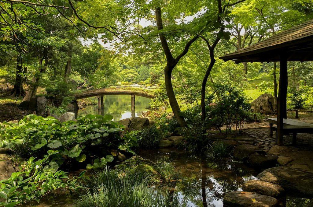 Japanese Garden Rikugien