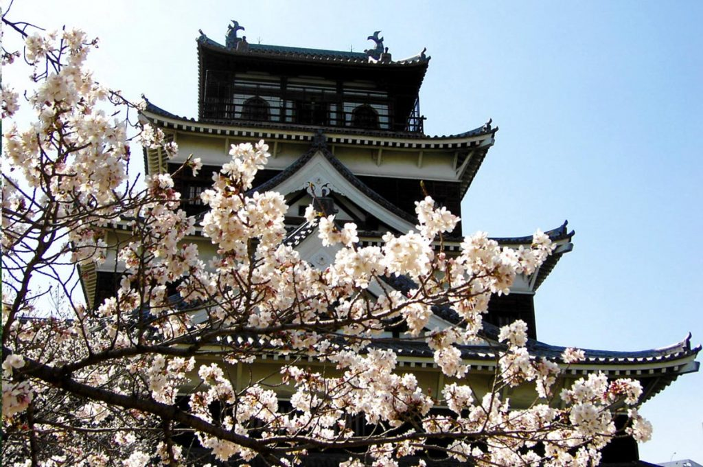 Cherry Blossom Festival Japan Hiroshima Castle