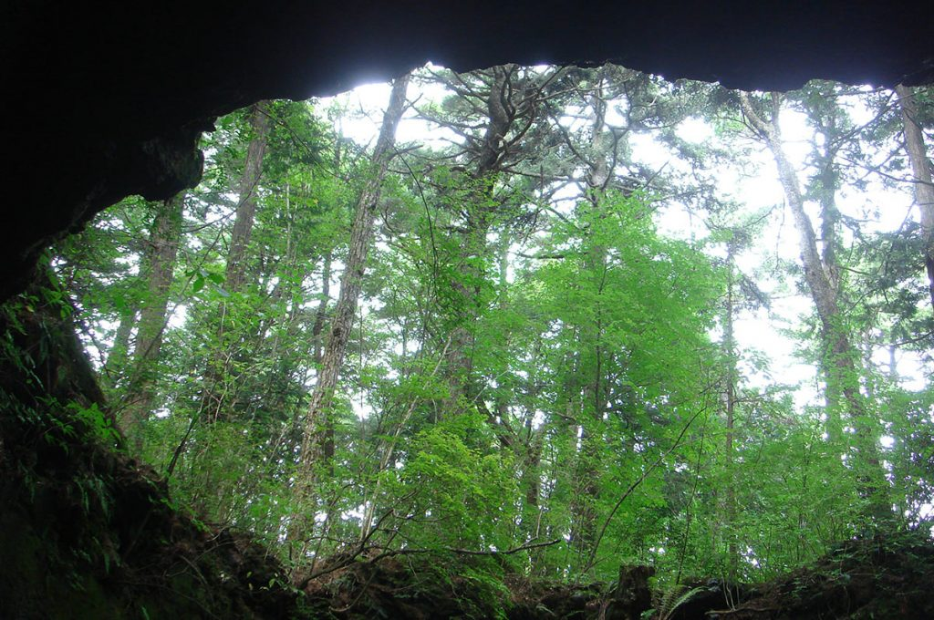 Haunted Forest in Japan Cave