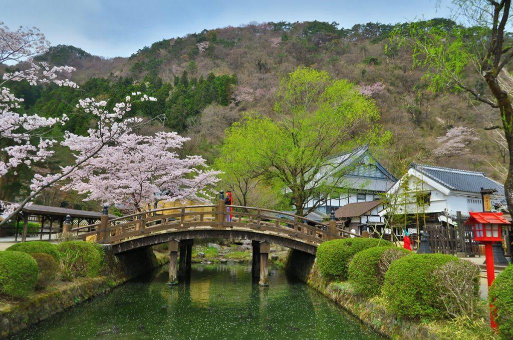 Cherry Blossom Festival Japan Edo Wonderland Nikko Edomura
