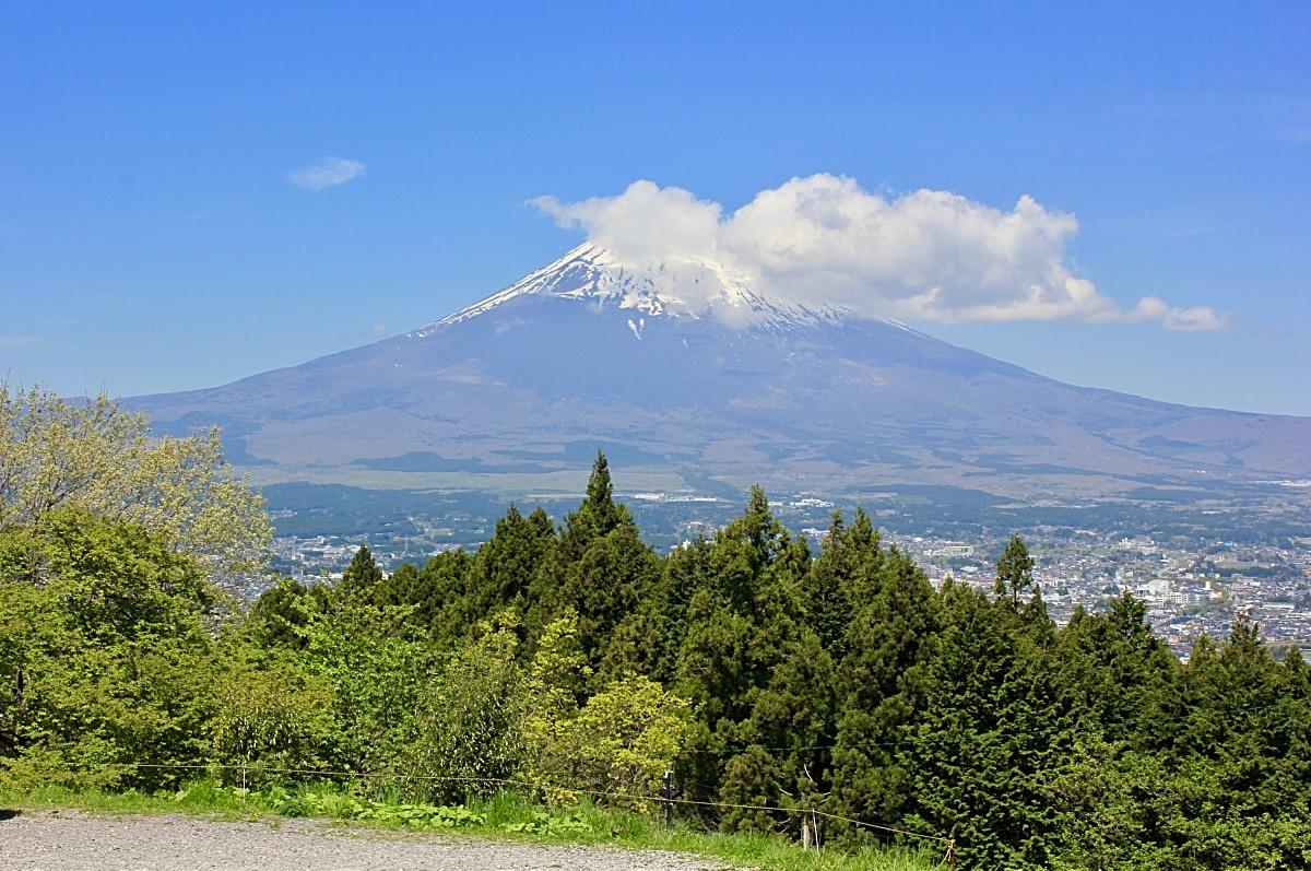 Climbing Mt Fuji Trees before Mountain