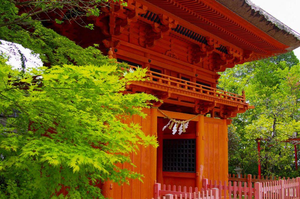 Kumamoto Japan Rokuden Shrine