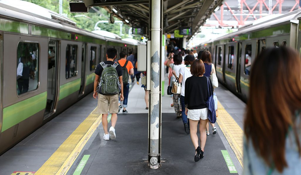 Day Trip Tokyo Train