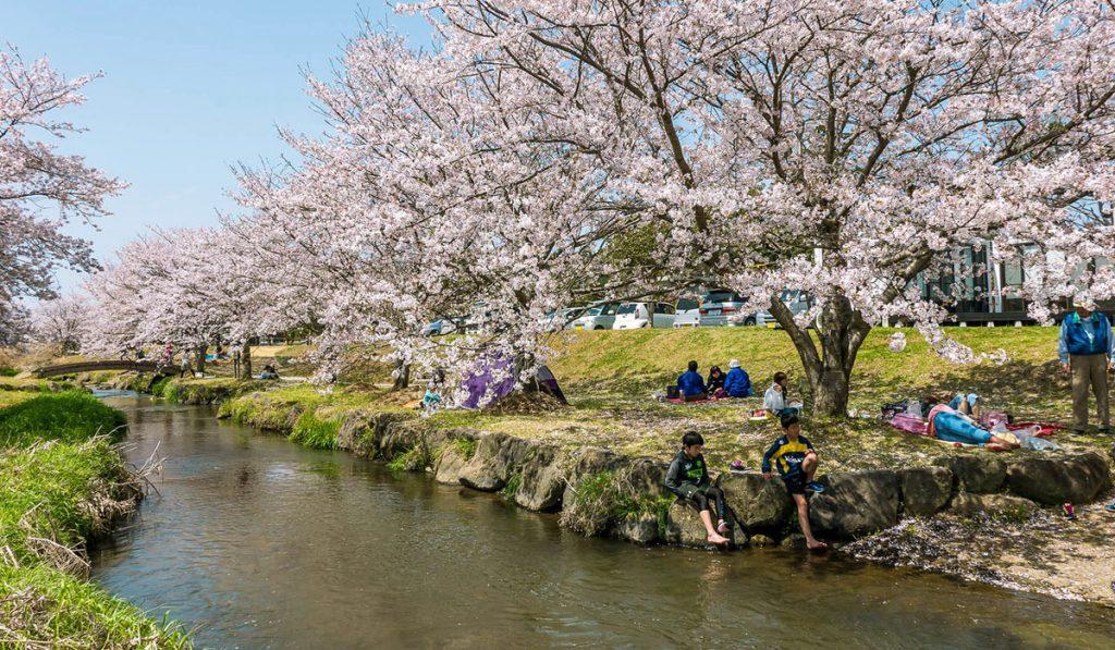 kumamoto travel Akizugawa Kasen Park