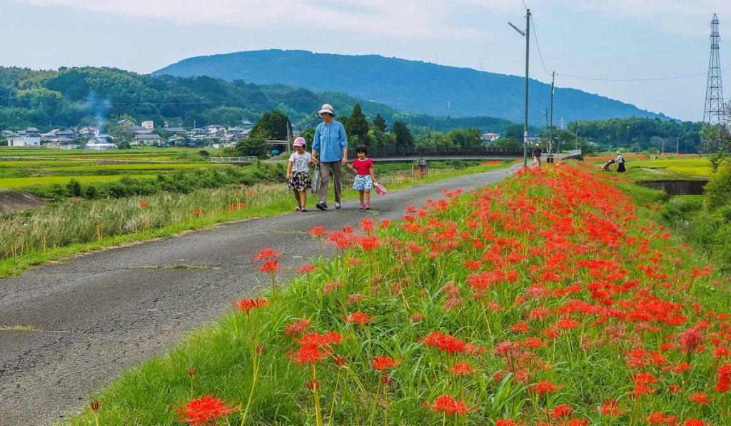 kumamoto travel rural life