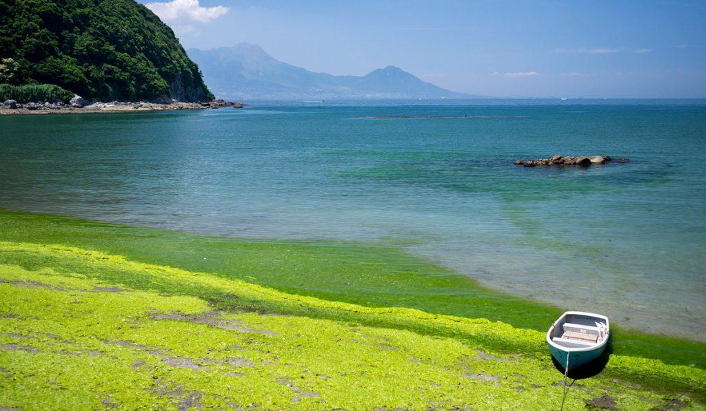 kumamoto travel Shirato Beach
