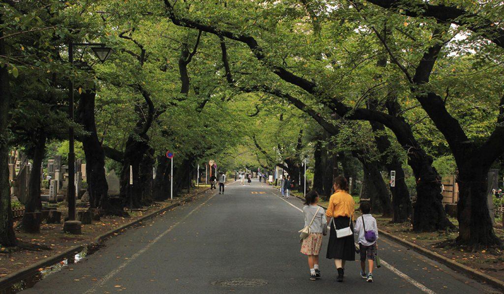Yanesen Tokyo Cemetery