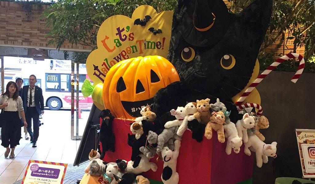 Bake-Neko Halloween Parade