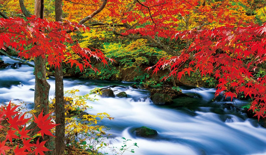 Oirase Gorge Aomori prefecture