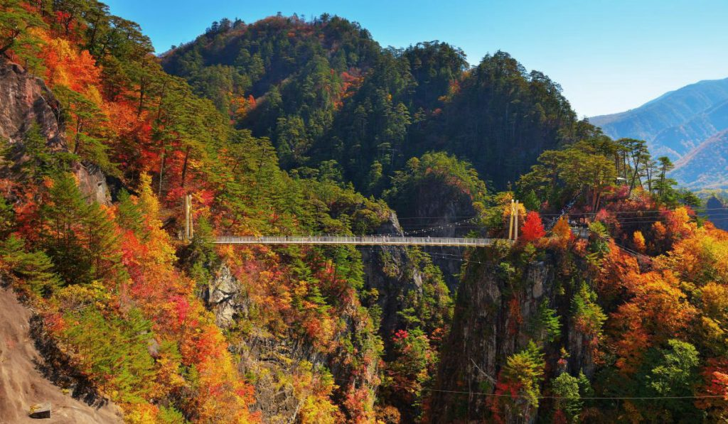 autumn leaves japan Setoaikyo Canyon Nikko Tochigi prefecture