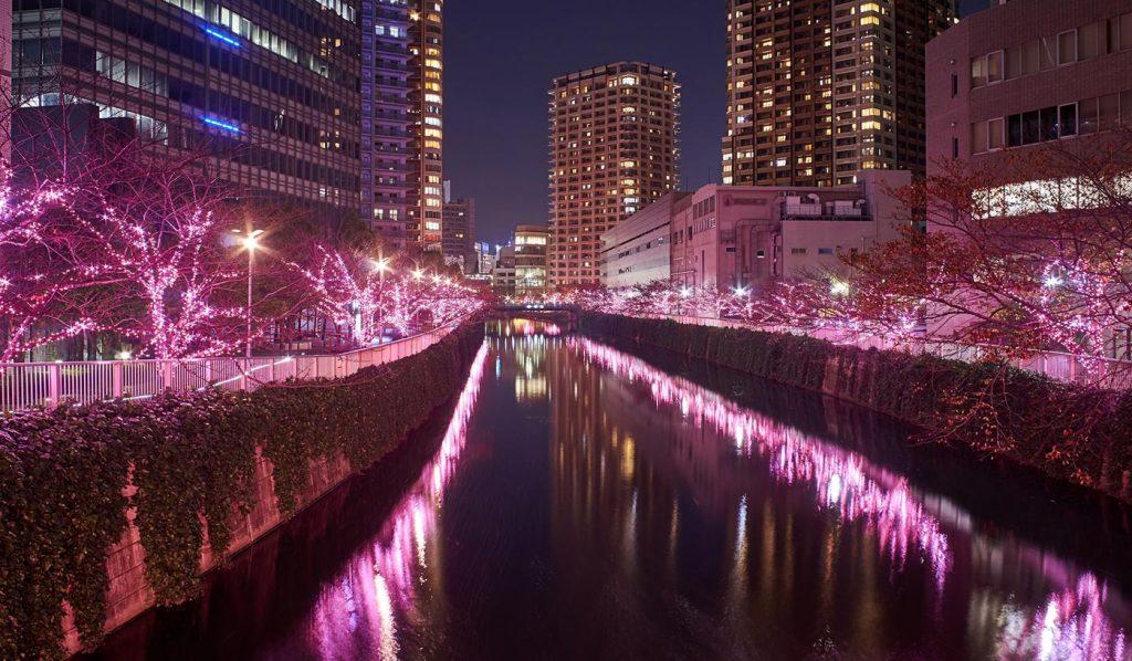 Tokyo Illumination Meguro River