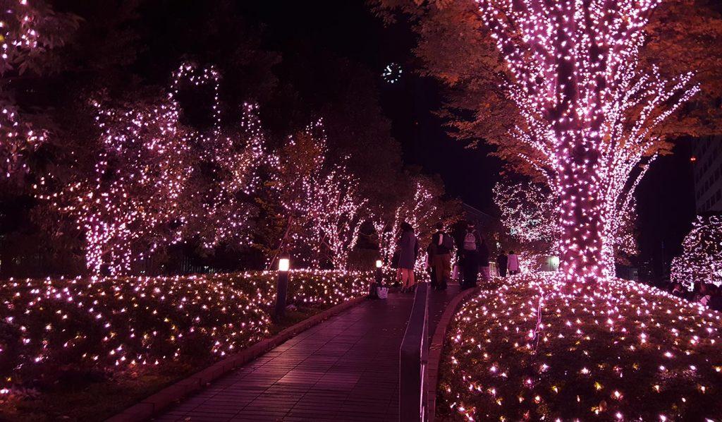 Tokyo Illumination Shinjuku