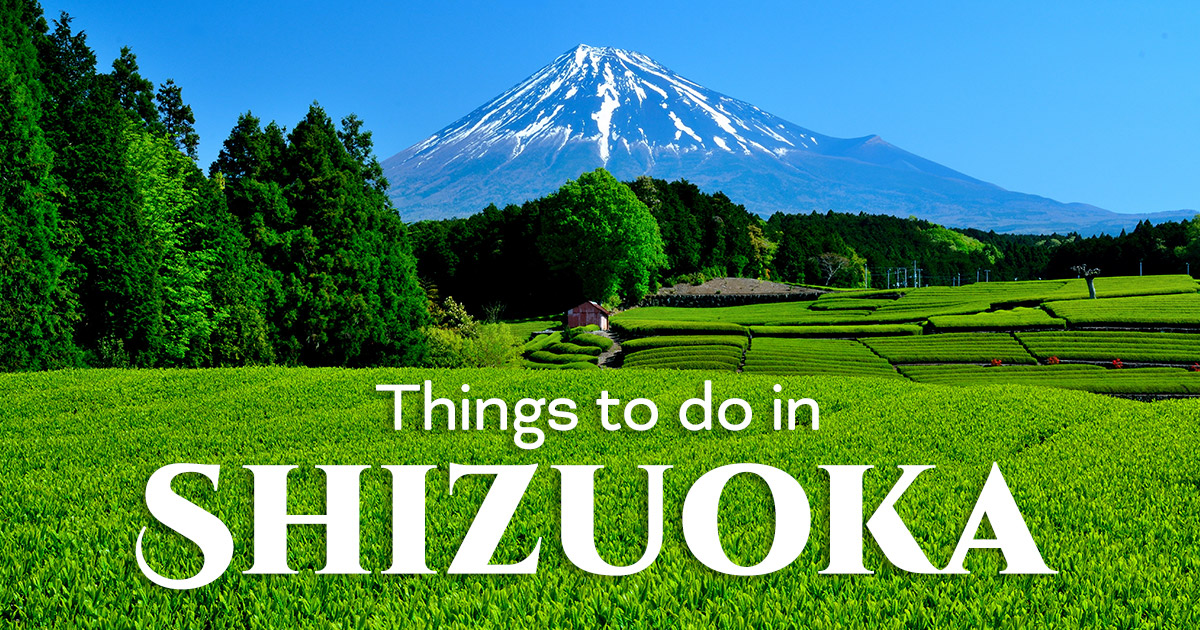 10 Unique Things To Do in Shizuoka