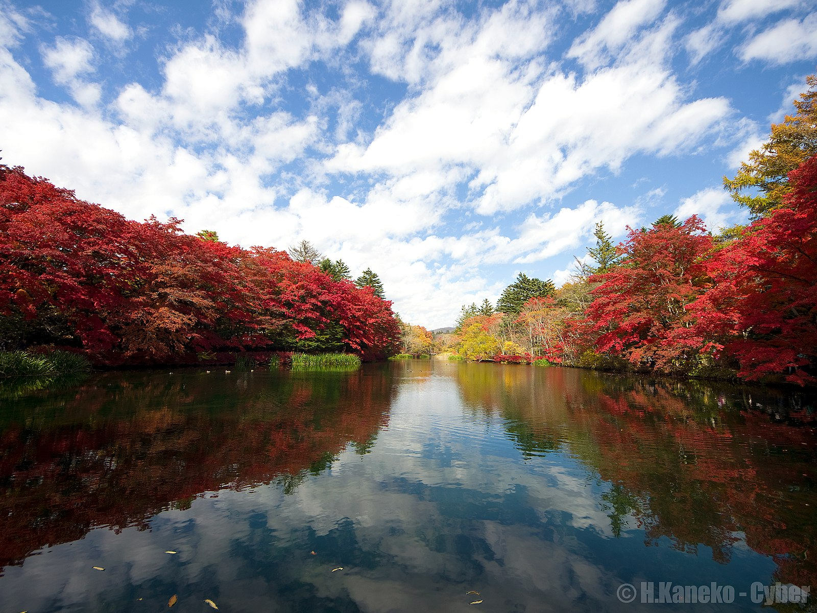 things to do in karuizawa