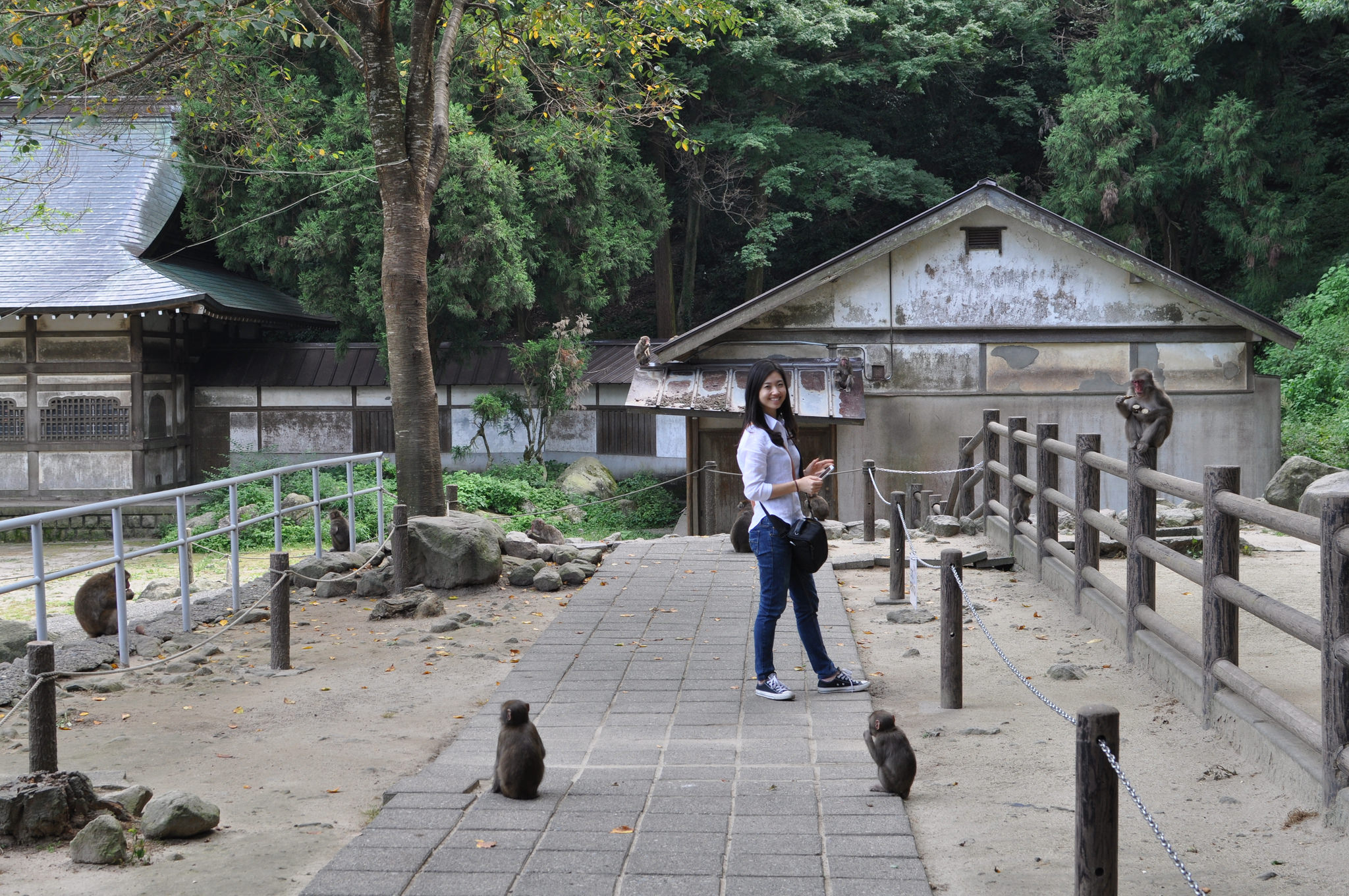 things to do in oita