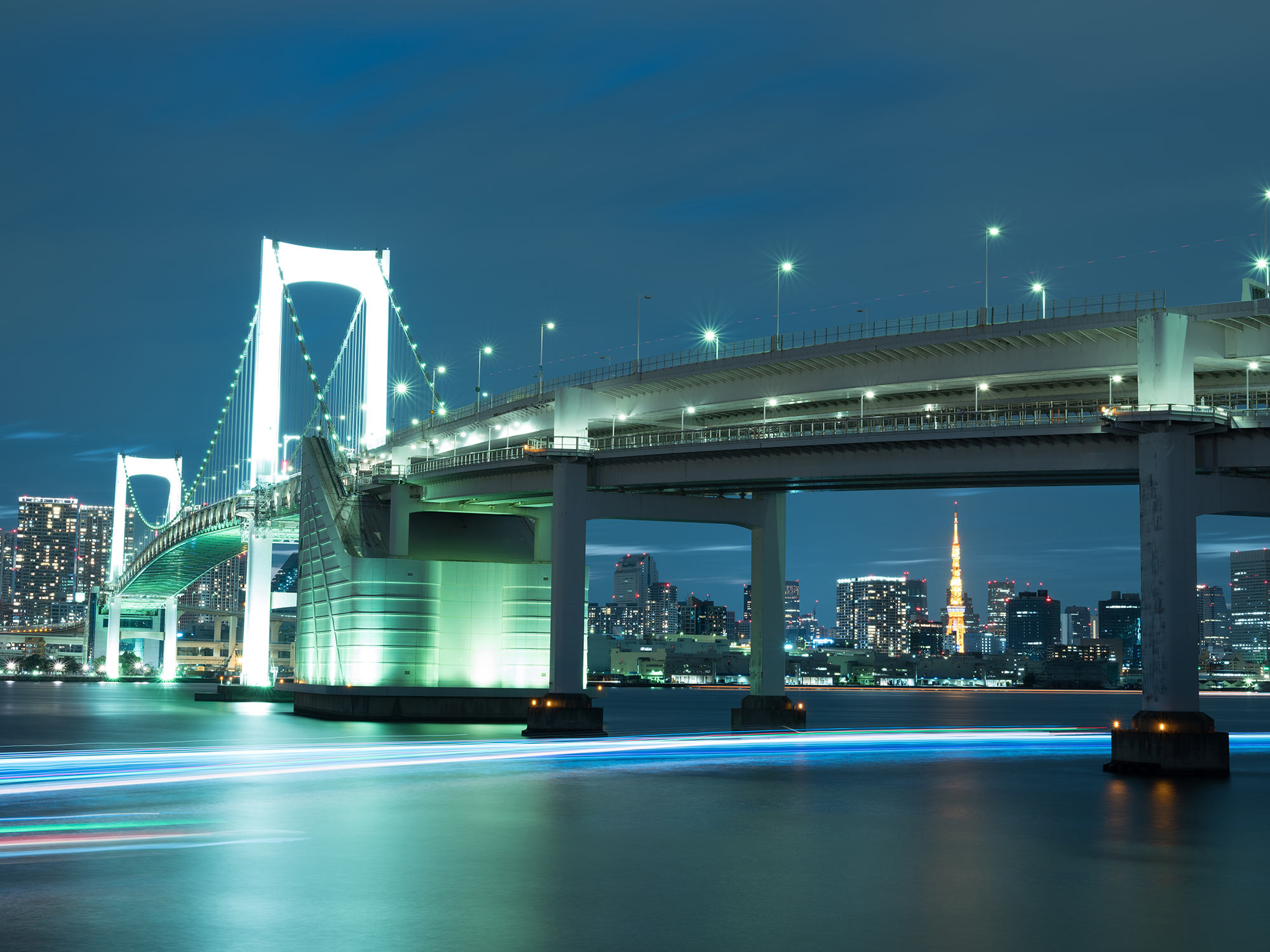 Things to do in Tokyo at night Cruise