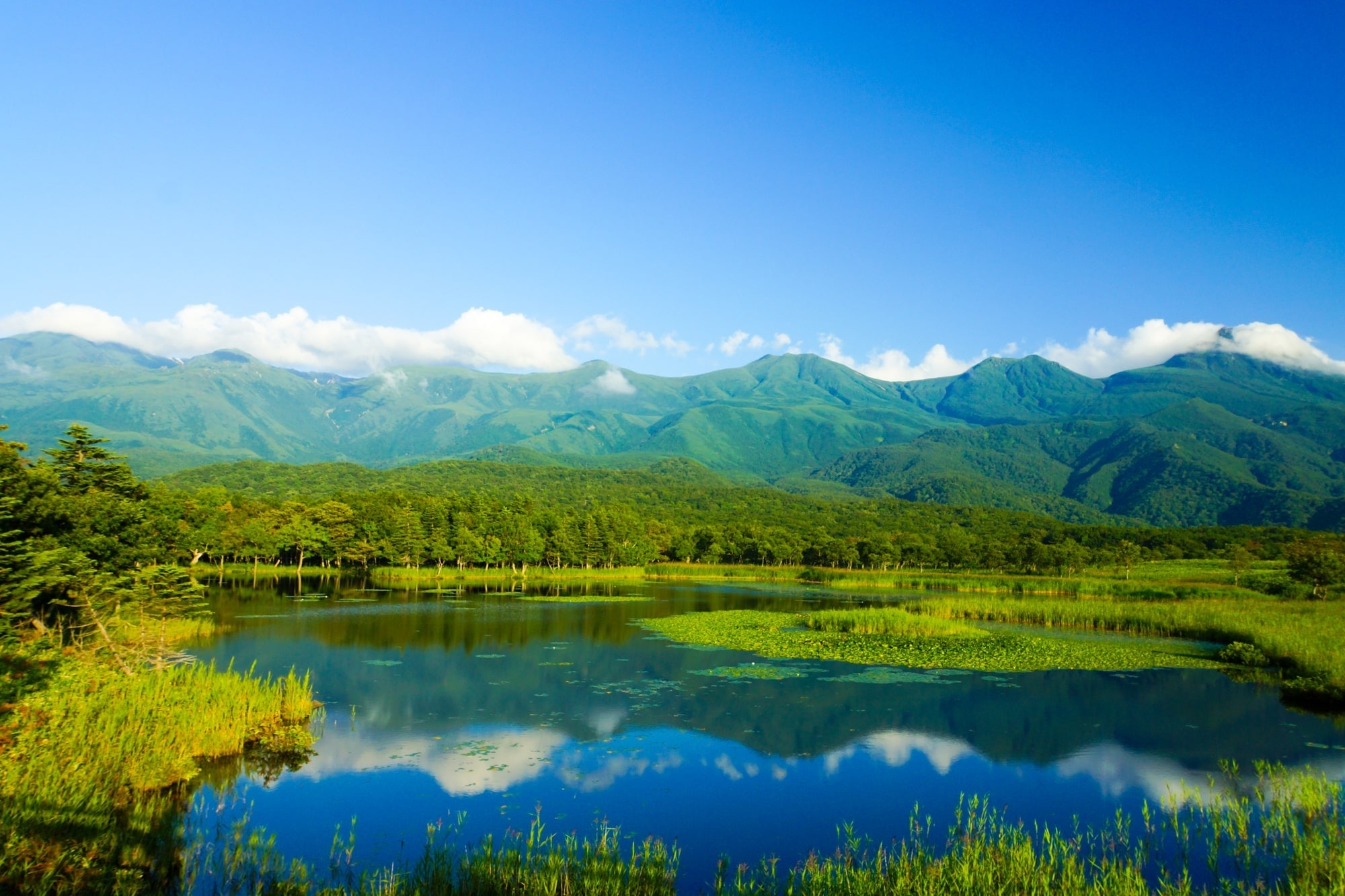 10 Best National Parks To Visit in Japan - Shiretoko National Park