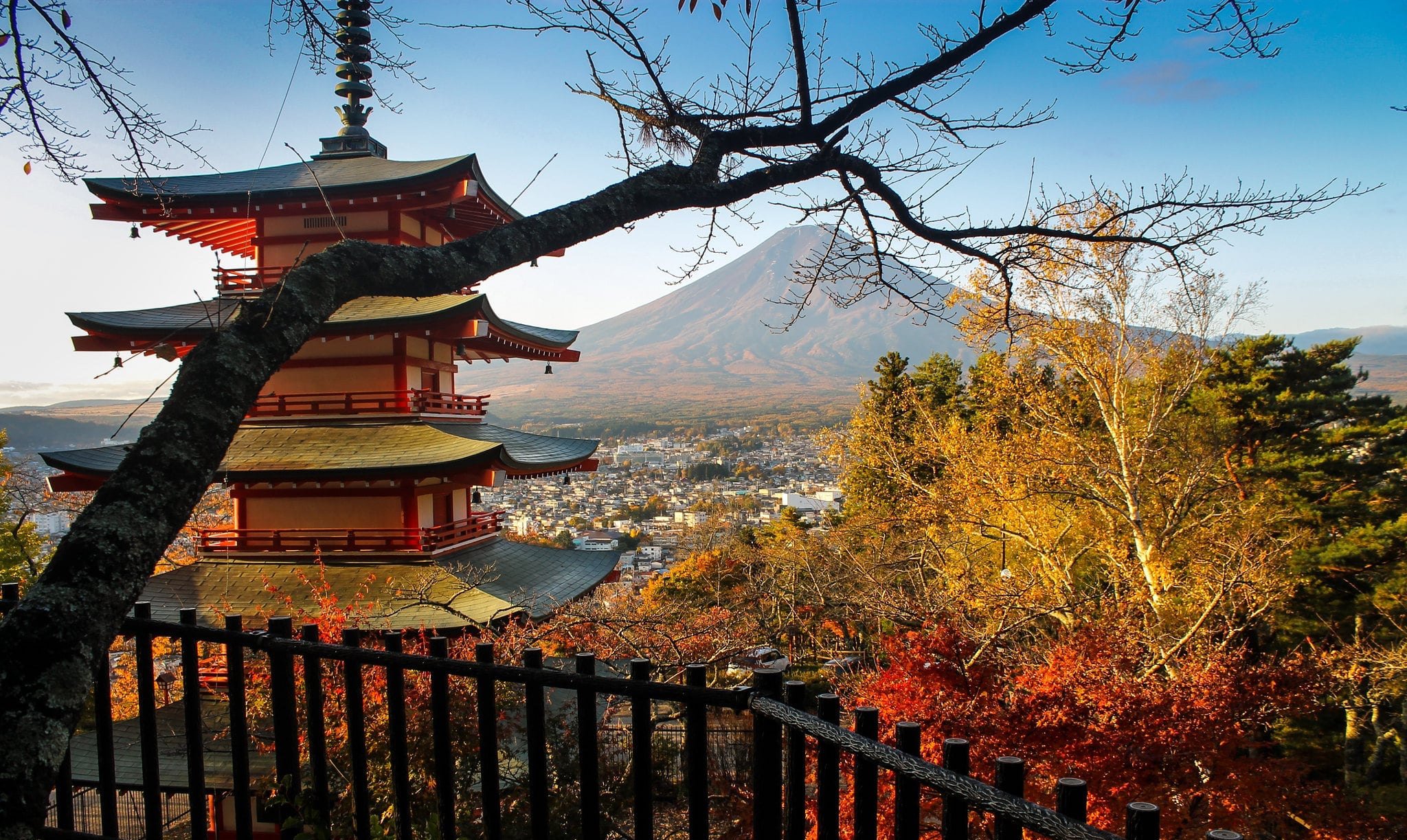 Autumn in Japan 2019: Your Best Shots
