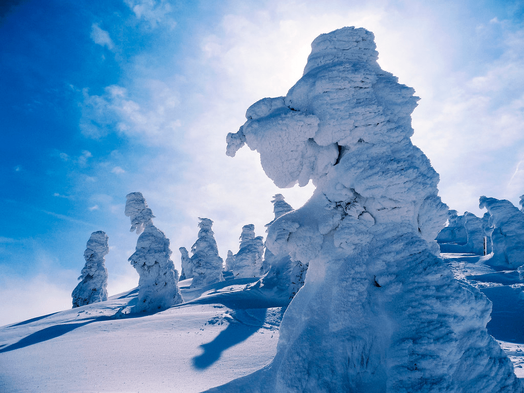 The Best Places to Visit in Japan During Winter4