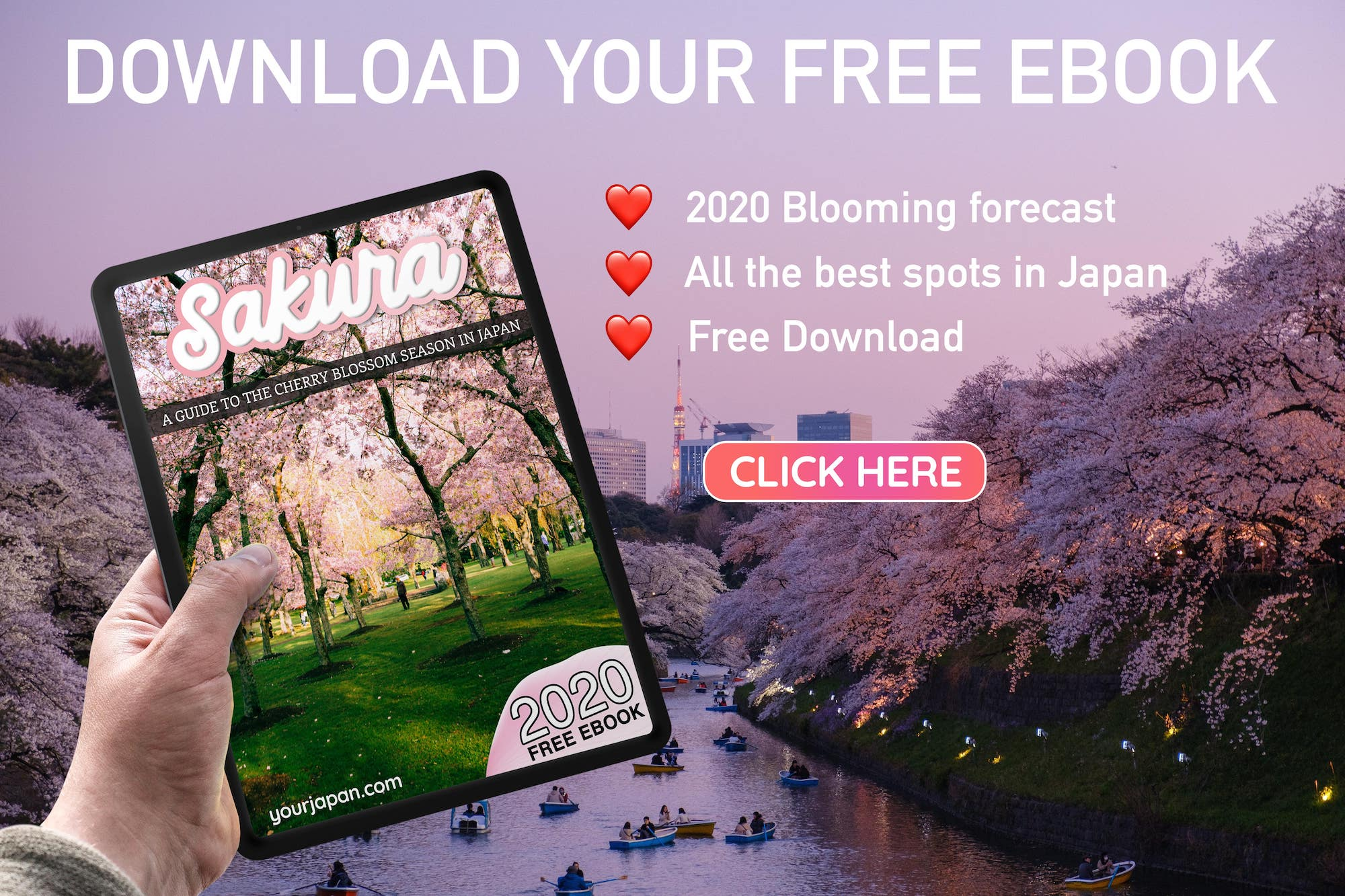 cherry blossom ebook