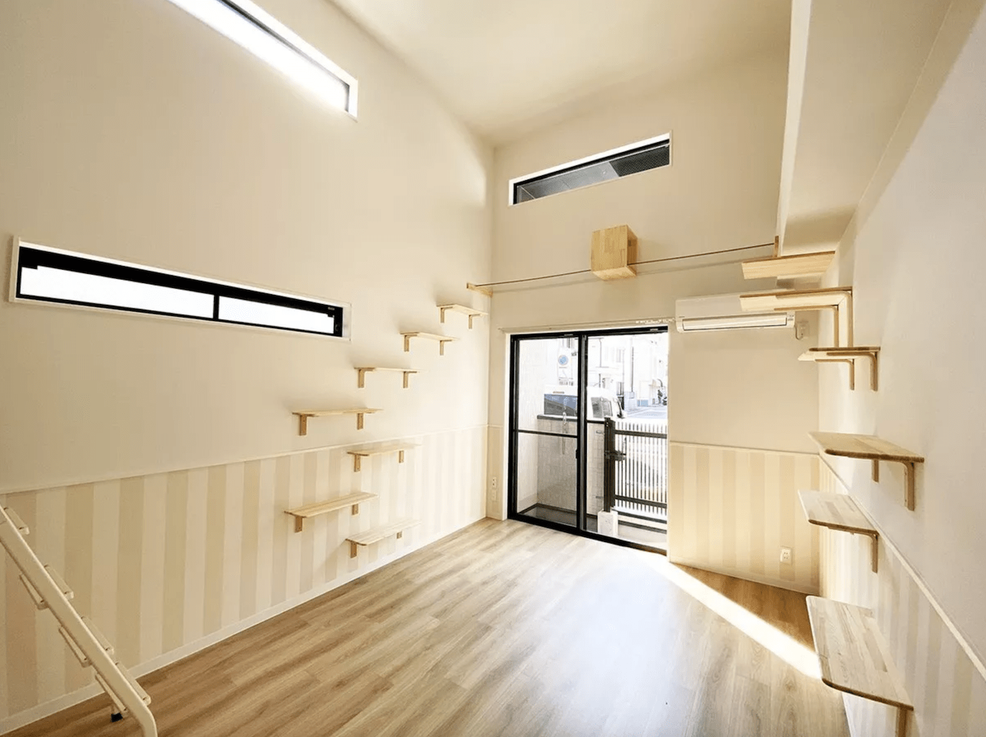 You Can Now Rent An Apartment Designed For Your Cat