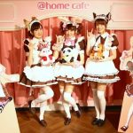 maid cafes japan