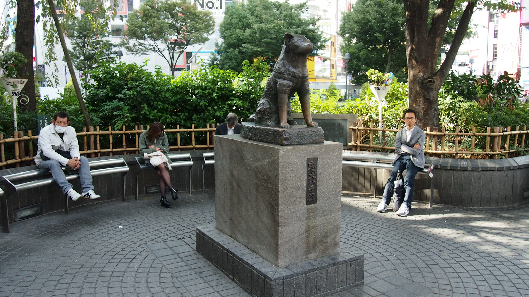 9 Things to Know About Hachiko – Japan's Most Devoted Dog