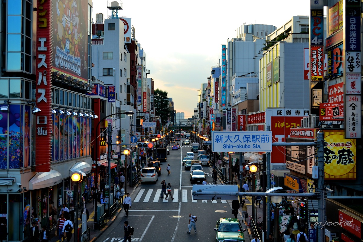Shin-Okubo Shopping Guide : Welcome to Tokyo's Koreatown