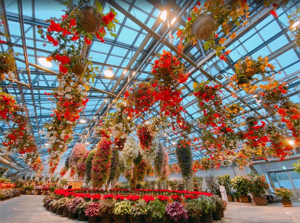 Nabana no Sato Greenhouse