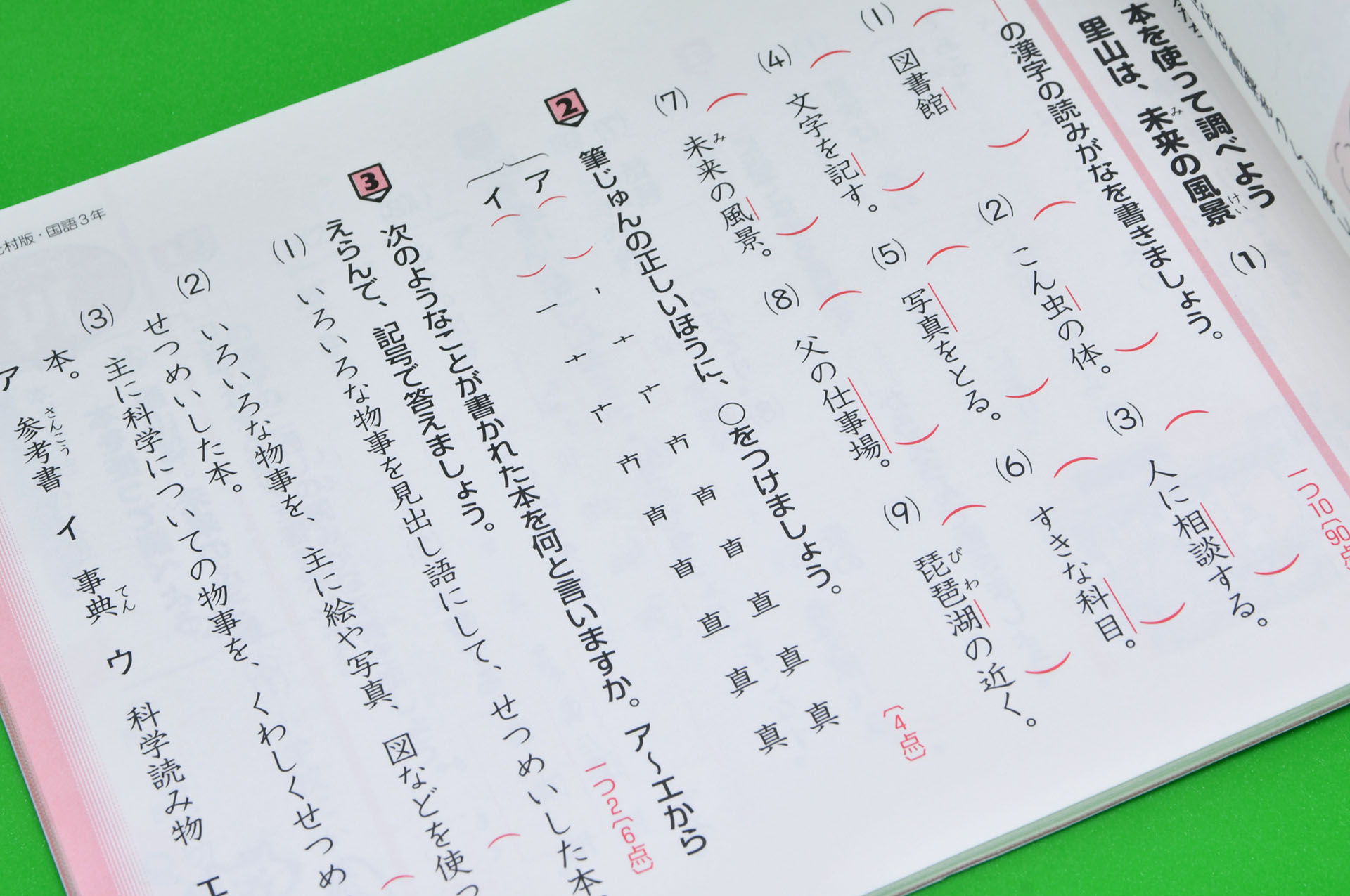 Top Facts About the Japanese Language