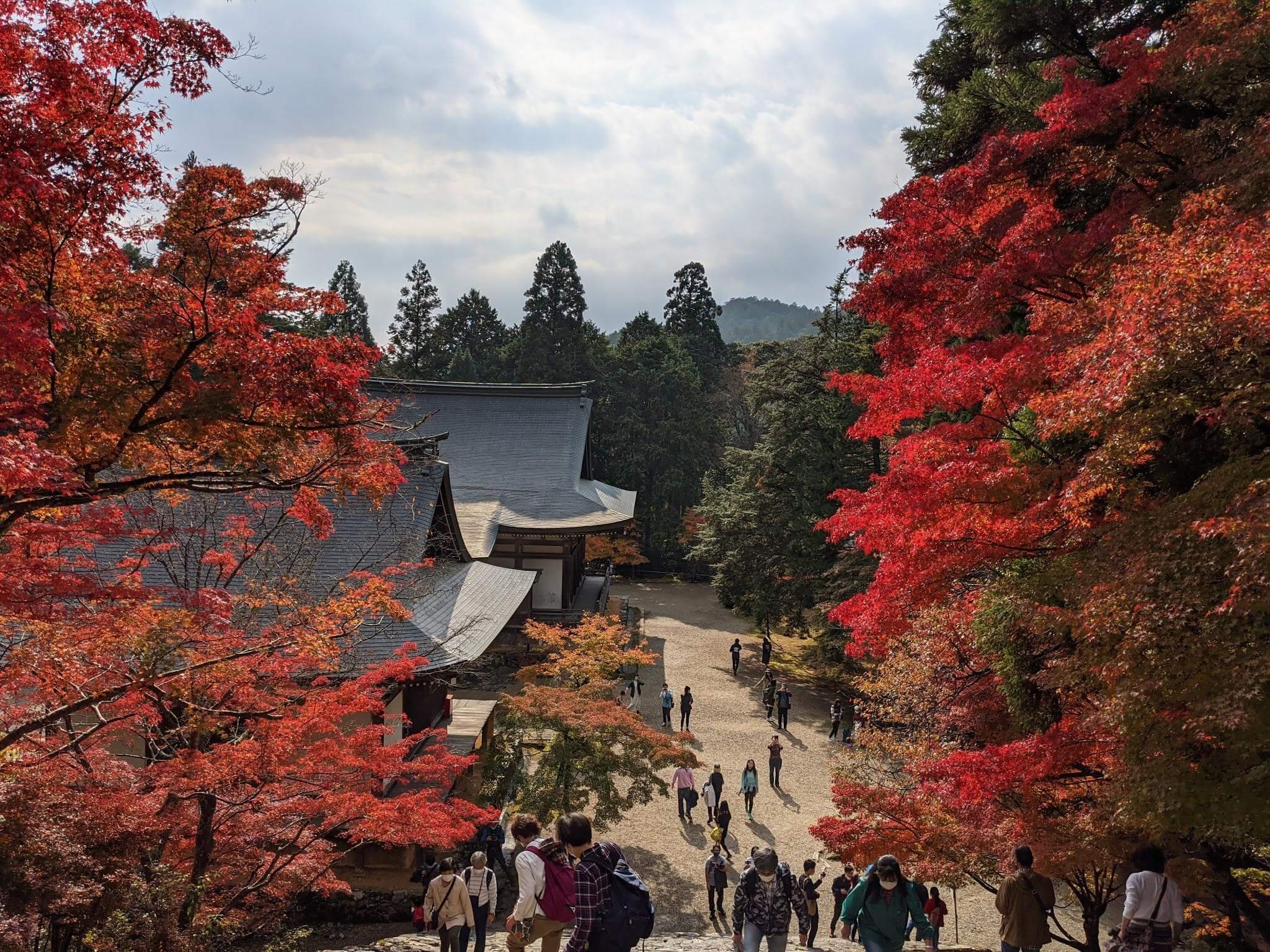 takao kyoto