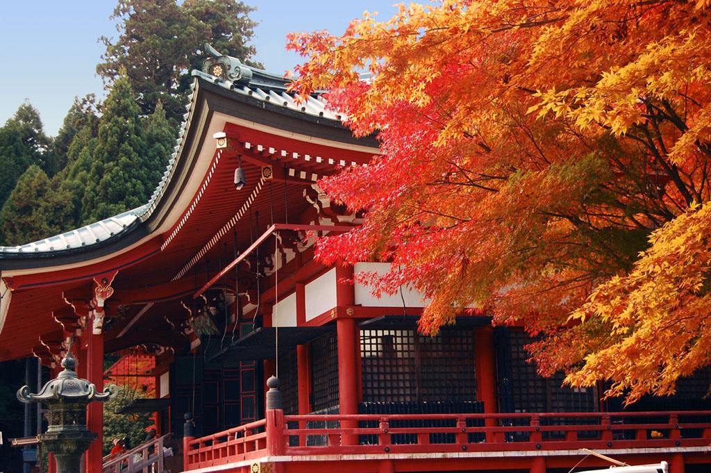 Enryaku-Ji in Autumn