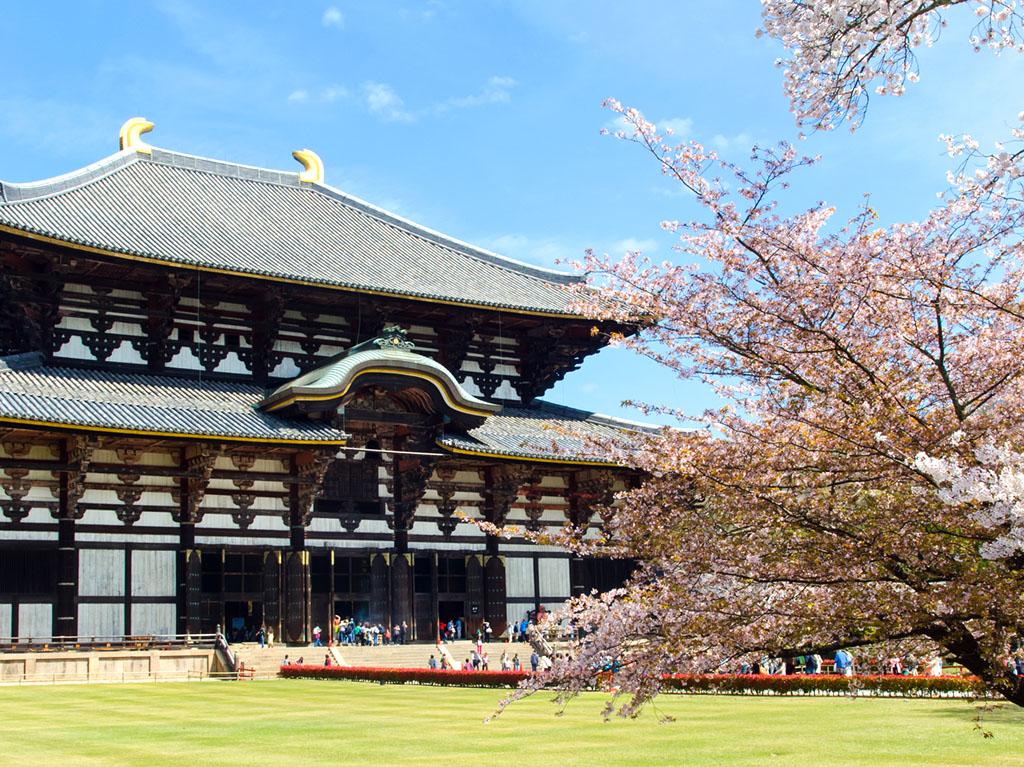 Must Visit Temple in Japan - Todaiji